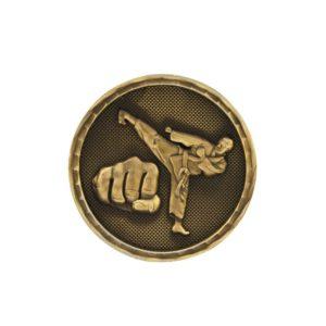 Taekwondo challenge coins